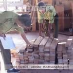 báo cáo giám sát môi trường cơ sở chế biến gỗ